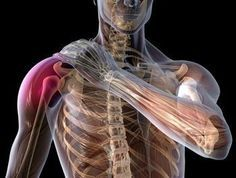 Shoulder Pain Exercise Relief Rotator Cuff Tendonitis Exercises