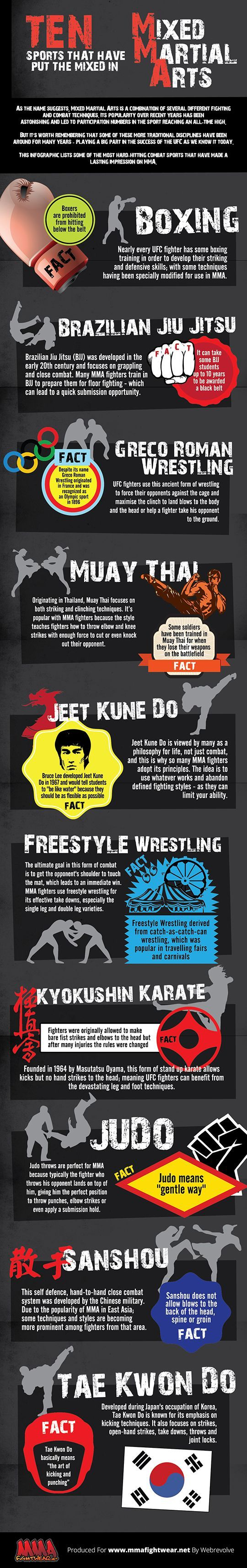 A propósito de las Artes Marciales Mixtas... Interesante infografía de cuáles componen estas artes.