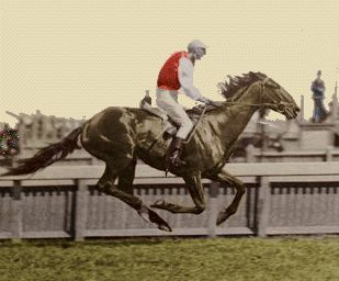 1898 The Grafter Melbourne Cup