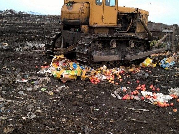 В Краснодарском крае за девять месяцев уничтожили более 400 кг «санкционной» продукции.