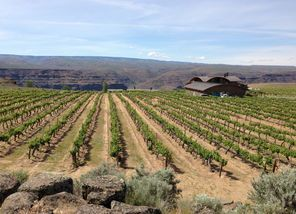 Cave B Estate Winery near George is creating wines from Ancient Lakes grapes