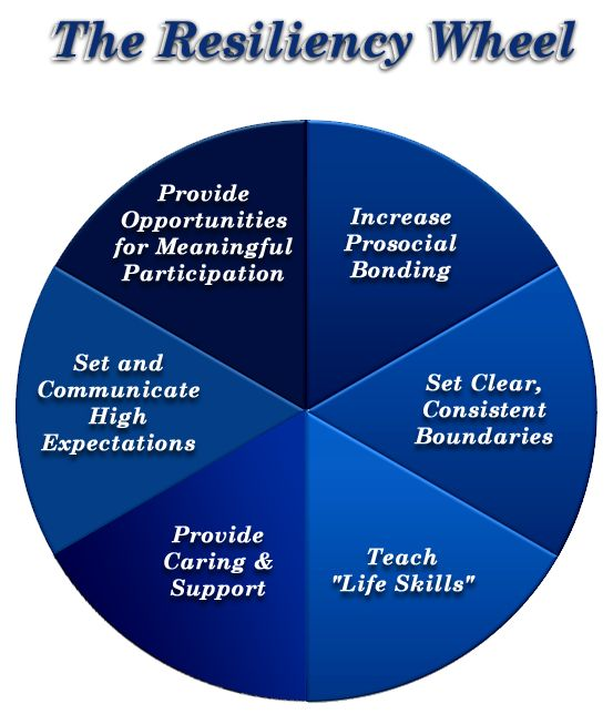 Resiliency Wheel: Helpful for crisis intervention  - repinned by @PediaStaff – Please Visit ht.ly/63sNtfor all our pediatric therapy pins