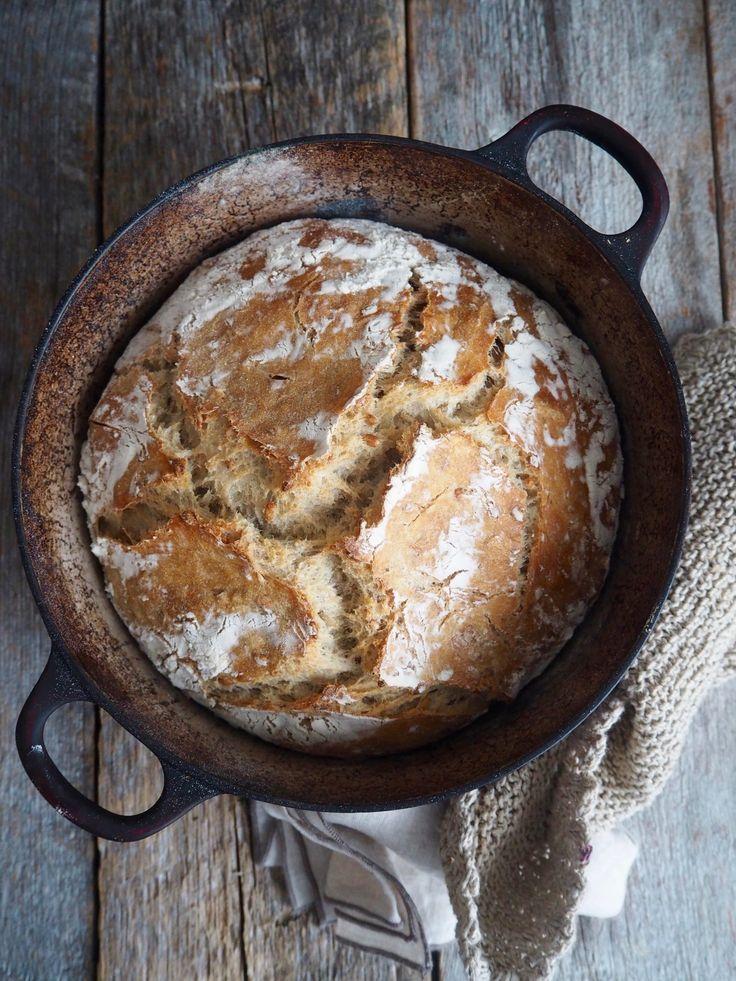 Eltefritt brød med byggryn og solsikkekjerner er første oppskrift i en uke med eltefrie oppskrifter. 5 nye eltefrie oppskirfter å rappen altså!