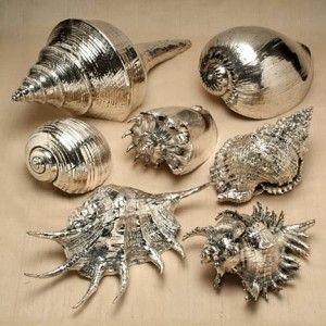 Silbermuscheln