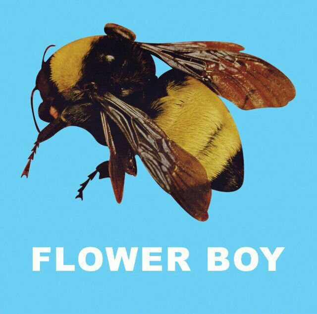 19 Best TYLER, THE CREATOR FLOWER BOY Images On Pinterest