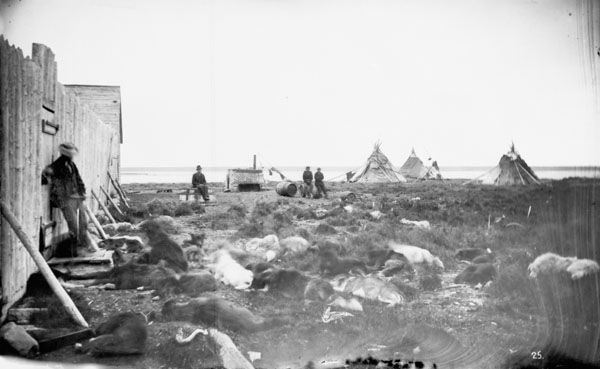 View across Hayes River at York Factory, Manitoba, Canada. Dogs resting in foreground. 1878.