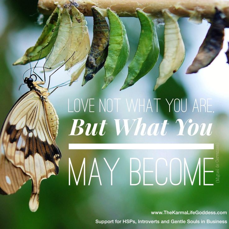 Spiritual Butterfly Quotes: 279 Best Butterfly Quotes Images On Pinterest