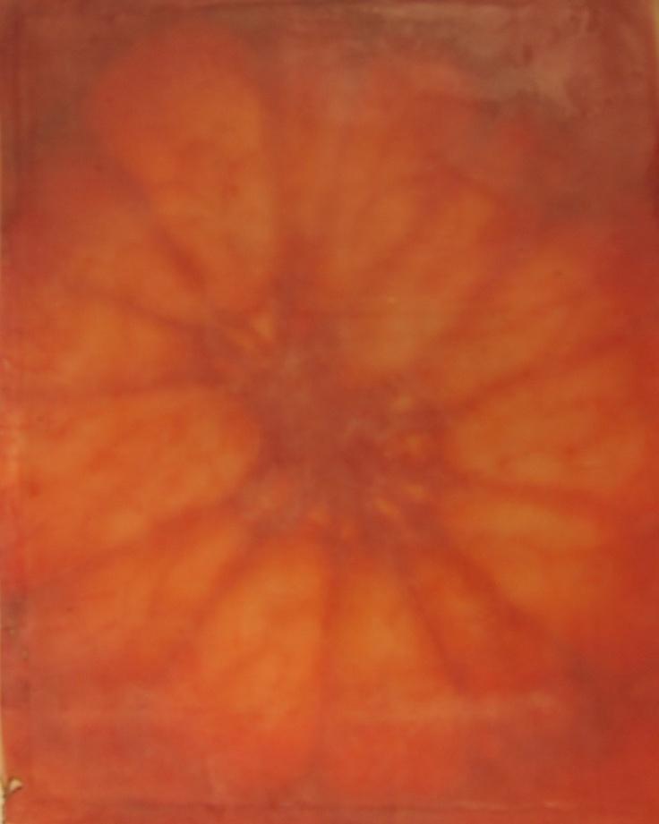 Grapefruit IV, photograph on silk with encaustic