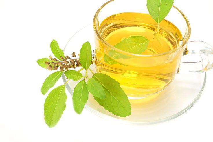 Chá de Manjericão Para Tratar Afta【Receita Completa】 | Dicas de Saúde