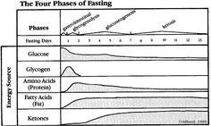 INHS Water Fasting article - What to expect on your first fast