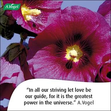 In all our striving let love be our guide, for it is the greatest power in the universe. A.Vogel
