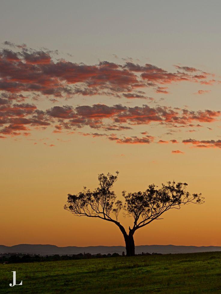 Cracker #Sunset  #Maitland #HunterValley  https://www.pinterest.com/johnlechnerart/my-shots/