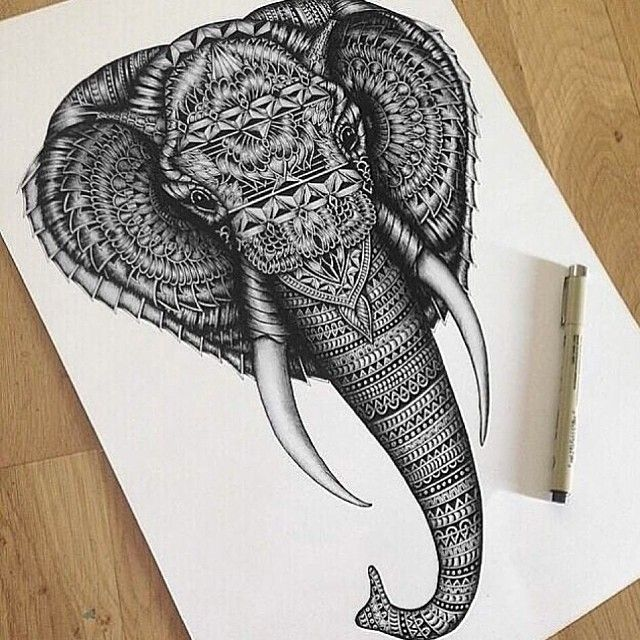 Elephant Tattoo Images Designs: 17 Best FAYE HALLIDAY Images On Pinterest
