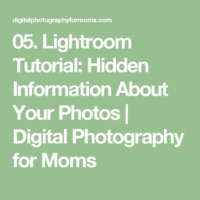 05. Lightroom Tutorial: Hidden Information About Your Photos | Digital Photography for Moms