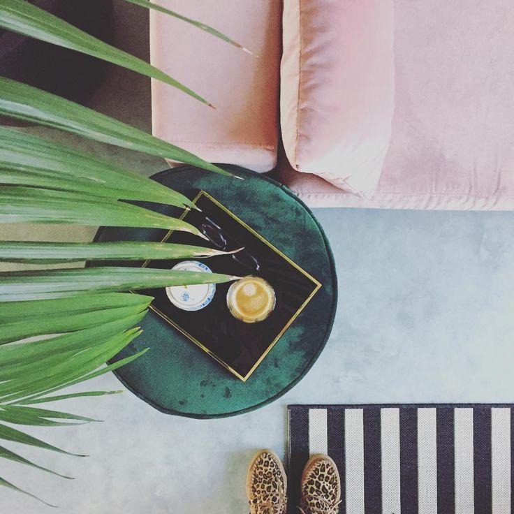 85 vind-ik-leuks, 7 reacties - ⚡️Pien Essink⚡️ (@studio_pien) op Instagram: 'Palms with dead ends. #greenfingerfail • • • #junglestyle #tropicalstyle #palms #velvet…'