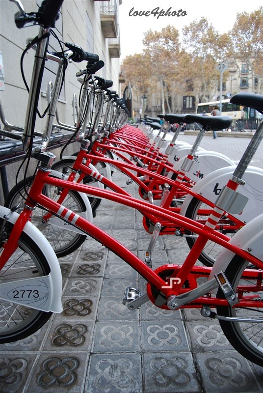 I want to ride my bicycles Colors  5x7 13x19cm Red by love4photo, $15.00