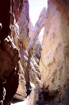 Anza Borrego, CA  It was one of slot canyons in Anza-Borrego Desert State Park and my favorite place.