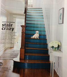 Escalier - marches - beau dégradé de bleus