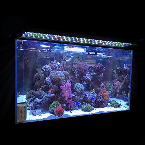 Koval Inc. 78 LED Aquarium Lighting for 24 inch - 30 inch Fish Tank Light Hood  This Upgraded Colorful Full Spectrum LED Aquarium Light with Extendable Brackets is great for your aquariums. It is not only helps algae to grow more luxuriant, but also makes your aquatic plants have vivid color and adds ornamental value of your aquariums. Perfect for your water plant and fish.    Specifications:     - Aquarium Light: 78 LEDs   - Blue LEDs: 6pcs(460nm, 0.1W)   - Pink LEDs: 4pcs (465nm, 0.1W)…