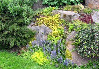 122 best landscaping with rocks images on pinterest for Landscaping rocks seattle