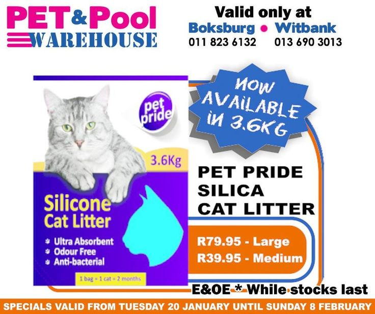 Fantastic #savings at Pet & Pool Warehouse Boksburg and Witbank, such as Pet Pride Silica Cat Litter - Now available in 3.6kg. To view all specials click here: http://apin.link/2Z7. Specials are valid from 20th of January 2015 until 8th of Febuary 2015. While Stocks Last *E&OE #PetPool #Specials