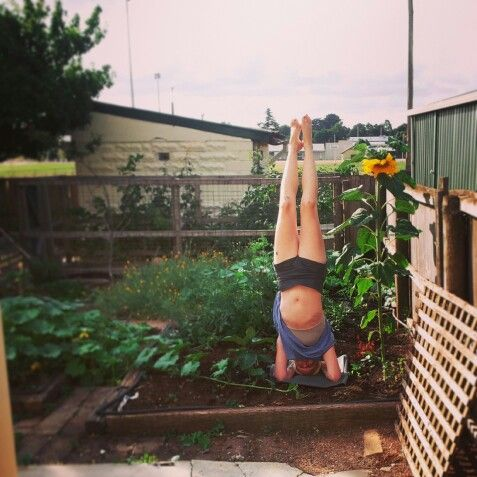 Headstand, yoga, sunflower @alicethecameltoe