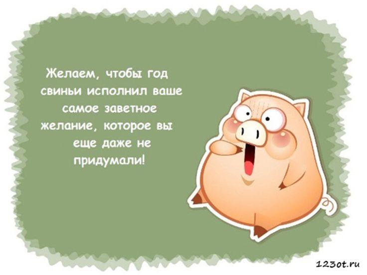 Смешные открытки с поздравлением на новый год свиньи, днем ангела