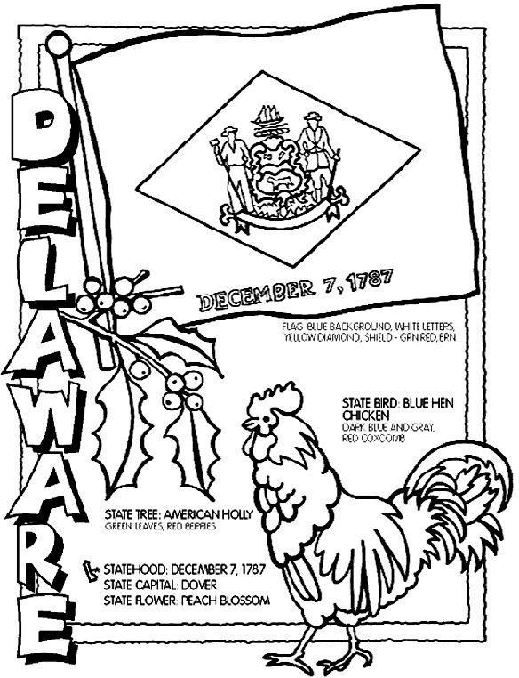 Use Crayola® crayons, colored pencils, or markers to color the Delaware page. 1. Color the flag with a blue background, white letters, and a yellow diamond. Color the shield green, red and brown. 2. Color the holly tree with red berries and green leaves. 3. Color the blue hen chicken blue, gray and red.