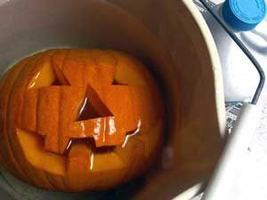 """Good To Know """"After you scoop out and carve your pumpkin, dip it in a large container of bleach and water (use a 1 tsp:1 gal mix). The bleach will kill bacteria and help your pumpkin stay fresh longer. Once completely dry, (drain upside down), add 2 tablespoon of vinegar and 1 teaspoon of lemon juice to a quart of water. Brush this solution onto your pumpkin to keep it looking fresh for weeks."""""""