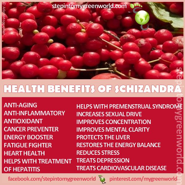☛ Do YOU know the Schizandra Berrry?  As seen on Dr. Mehmet Oz: It is a little miracle berry.  FOR ALL YOU NEED TO KNOW ABOUT THE SCHIZANDRA BERRY:  http://www.stepintomygreenworld.com/greenliving/greenfoods/a-little-miracle-called-the-schizandra-berry/  ✒ Share | Like | Re-pin | Comment