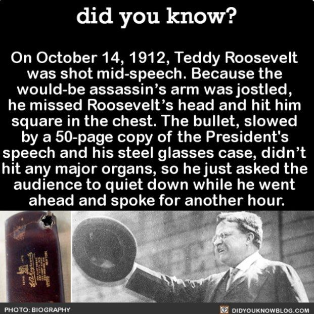Teddy has no chill. #nochillzone #awesome #history #president #cool   Share the …
