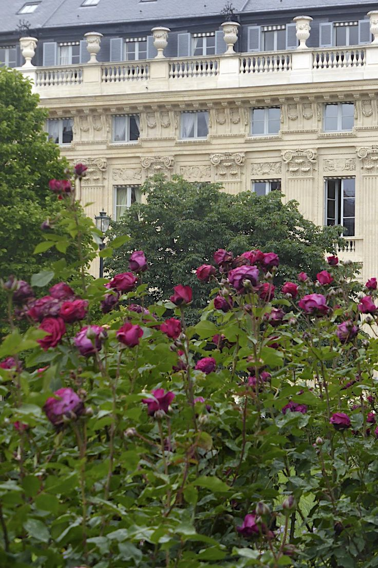 Grand hotel du palais royal paris black tomato - Grand Hotel Du Palais Royal Paris Black Tomato 32