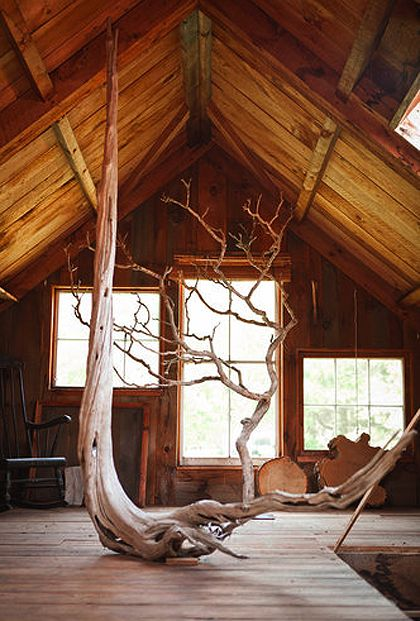 Bringing the outdoor inside....inside trees: