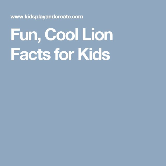 Fun, Cool Lion Facts for Kids