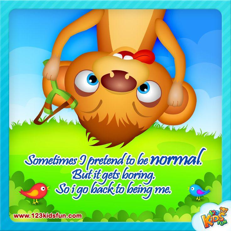 Sometimes... #quotes #funny #meerkat #Tashi