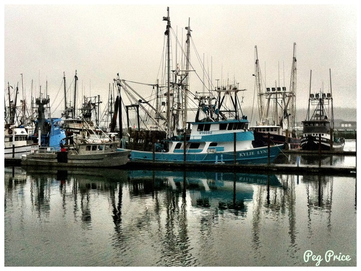46 best images about fishing on pinterest see best ideas for Newport oregon fishing