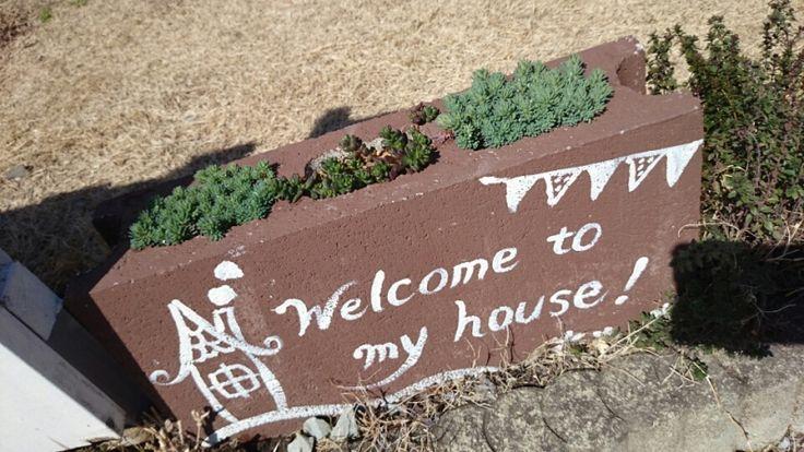 隣りのセダムはもう緑みどりしています  家で育った多肉植物とコンクリブロック鉢|*コツコツ♪トントン♪木工雑貨*