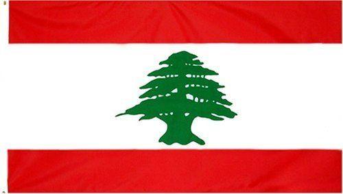 Lebanon Flag 3 x 5 NEW Lebanese 3x5 National Banner by FI. $4.75. lebanon flag. polyester. 2 grommets. lebanon flag