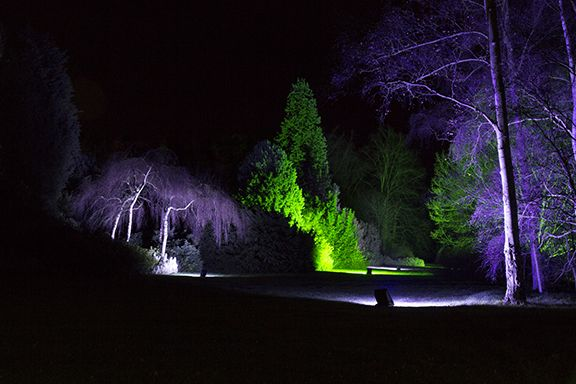 photos of the Winter Lights 2015 at Anglesey Abbey (c) Suzanne Morris @eastofenglandnt @nationaltrust