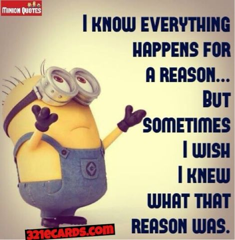 37 best images about Minion Funny Picture Quotes And ...