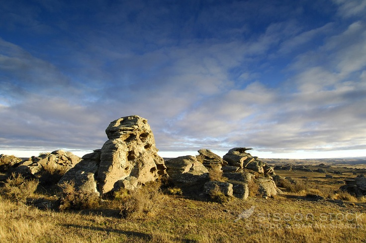 Rocky tors standing in the Central Otago landscape near Middlemarch- an iconic scene taken from the Taieri Gorge excursion train which departs from Dunedin Railway station..