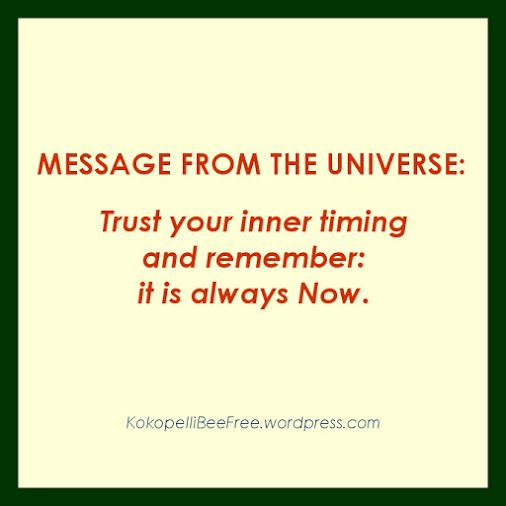 MESSAGE FROM THE UNIVERSE Timing | #KokopelliBeeFree #KBFMessagesFromTheUniverse #Timing #Now