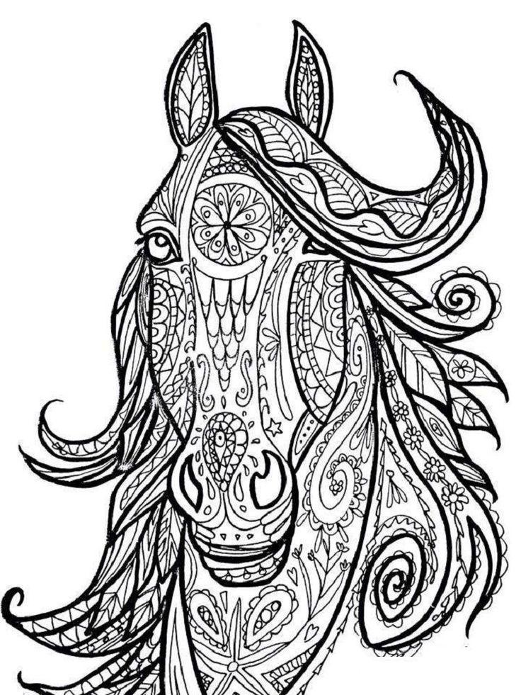 malvorlagen pferdekopf  horse coloring pages