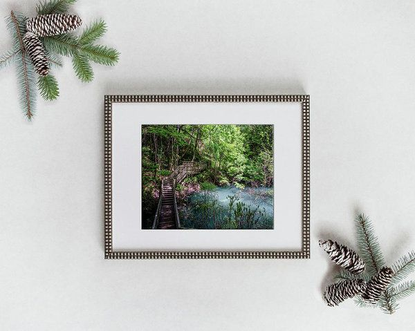 Visit joan-carroll.pixels.com to see a wide variety of prints suitable for #FRAMING and #GIFTS!.  All #ARTWORK is professionally printed, packaged, and shipped within 3 - 4 business days. Choose from multiple sizes and hundreds of frame and mat options.