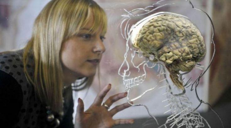 How the brain creates the illness