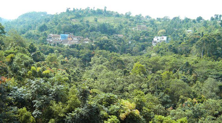 hill view @pramestha resort town