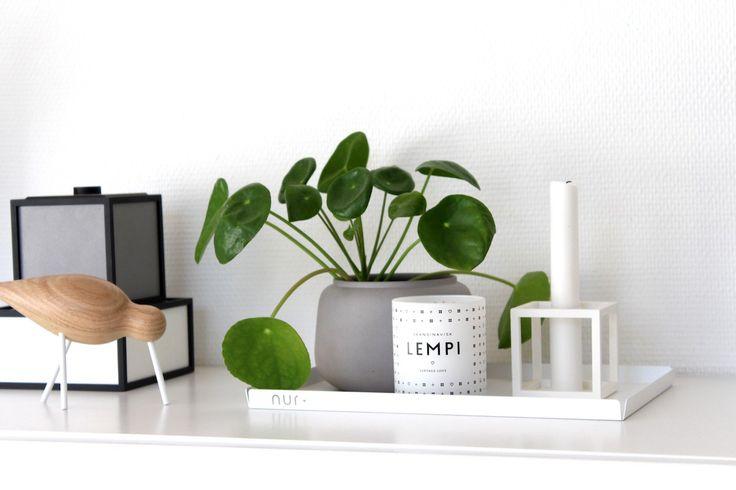 Jednoduchý a přitom minimalistický, takový je nadčasový design tá