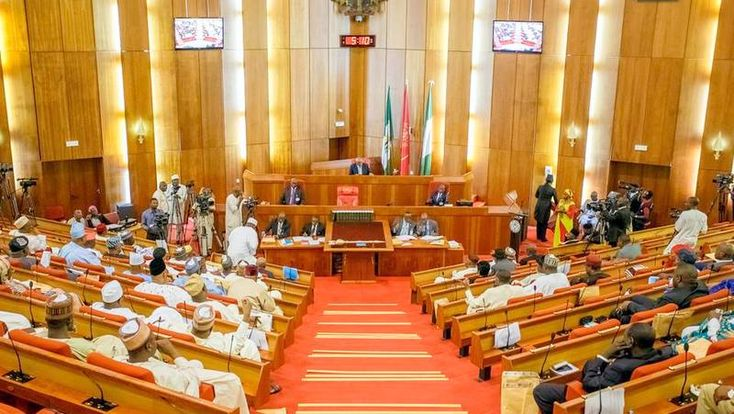 """""""This latest plot is directed at forcing a change of leadership in the Senate or... ground the Red Chamber of the National Assembly"""""""