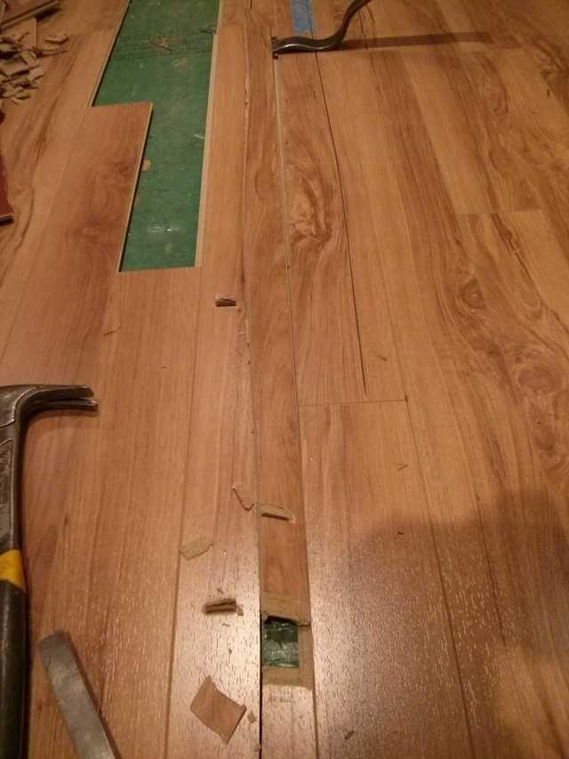 Repairing Water Damaged Laminate Flooring Laminate Flooring Flooring Laminate Flooring Diy