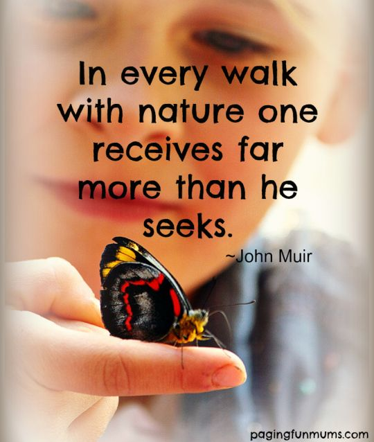 In every walk with nature one recieves more than he seeks ~ John Muir